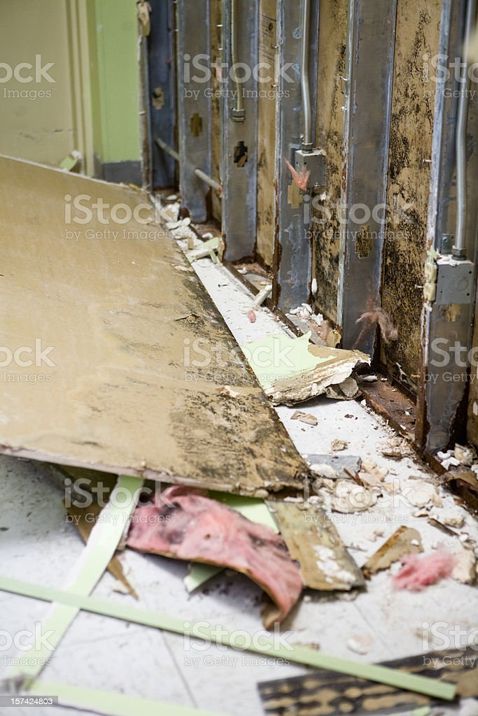 Molded Interior Office Wall stock photo