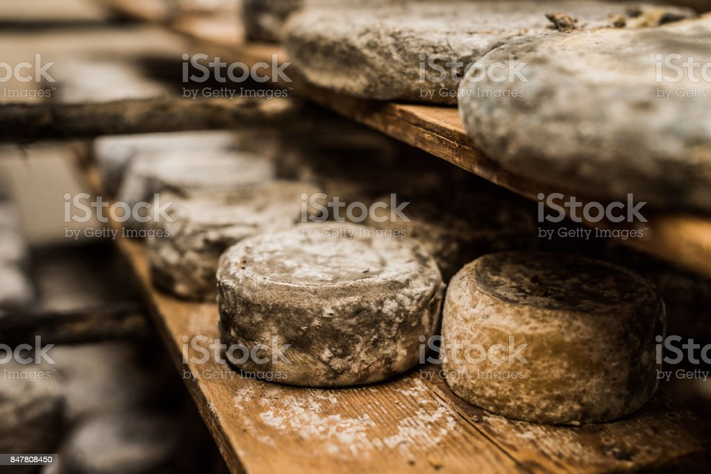 Molding French cheese on stacks stock photo