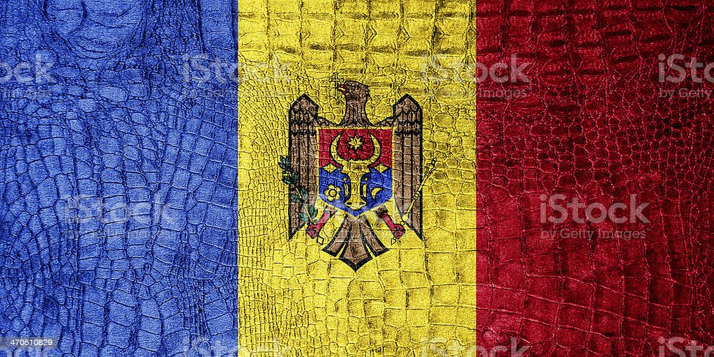 Moldova Flag painted on luxury crocodile texture stock photo