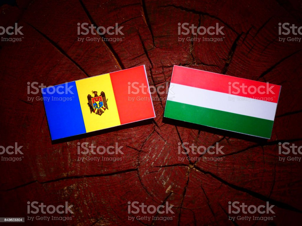 Moldovan flag with Hungarian flag on a tree stump isolated stock photo