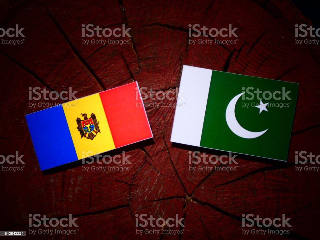 Moldovan flag with Pakistan flag on a tree stump isolated stock photo