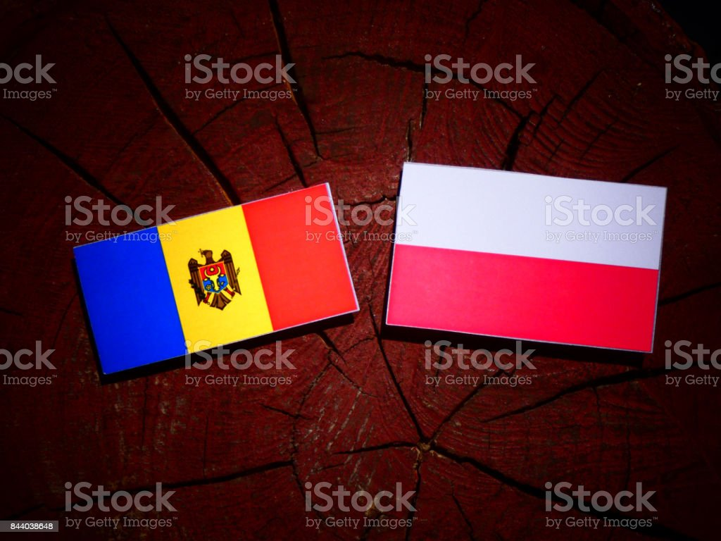 Moldovan flag with Polish flag on a tree stump isolated stock photo