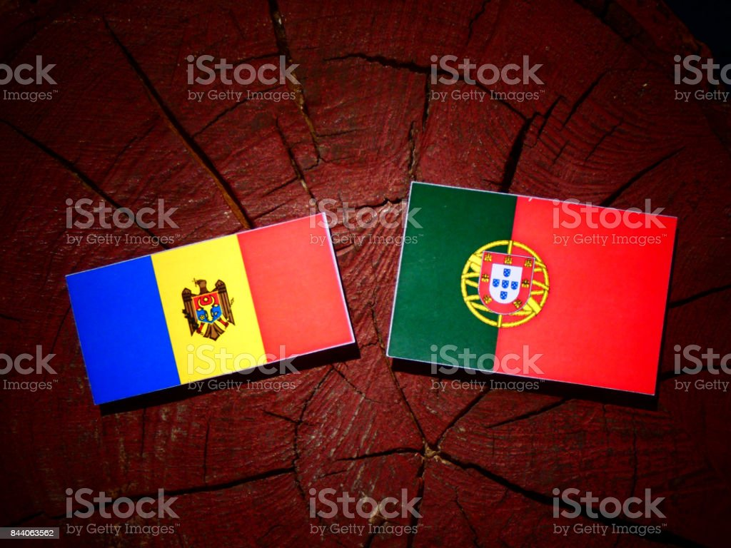 Moldovan flag with Portuguese flag on a tree stump isolated stock photo