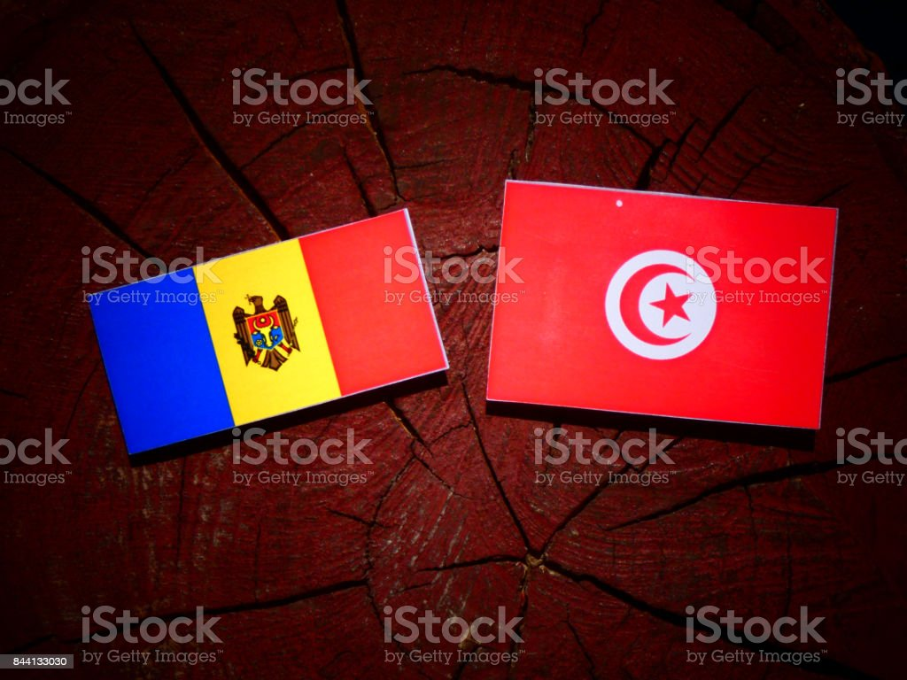 Moldovan flag with Tunisian flag on a tree stump isolated stock photo