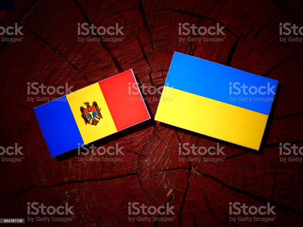 Moldovan flag with Ukrainian flag on a tree stump isolated stock photo