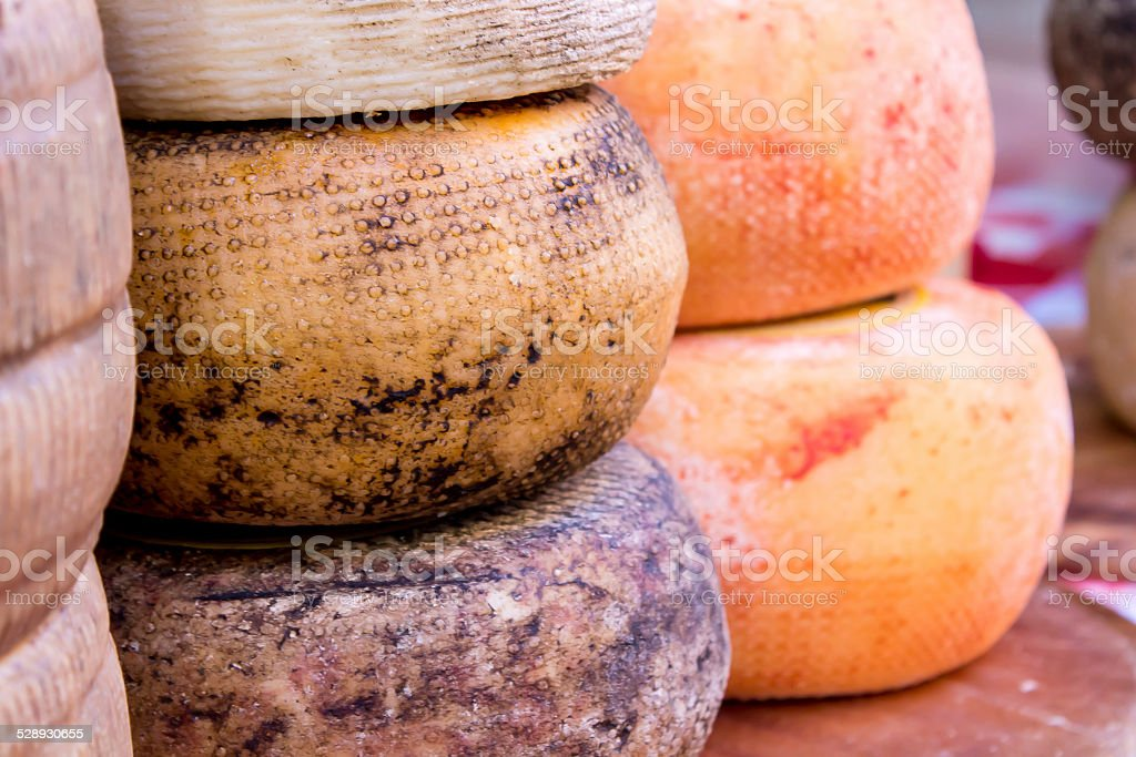 molds of pecorino cheese stock photo
