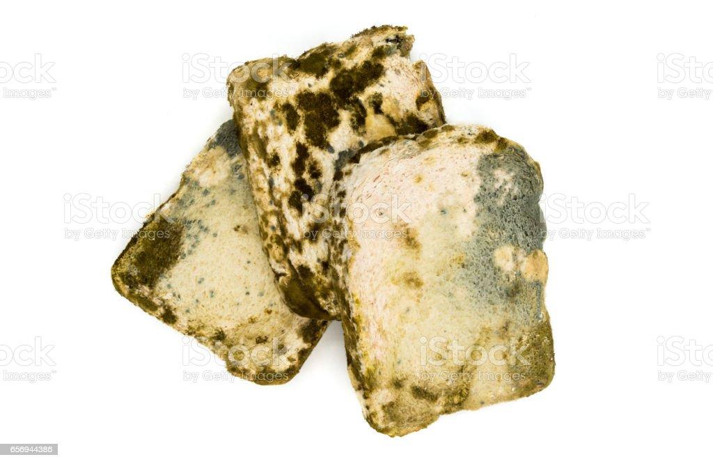 moldy bread slice on white stock photo