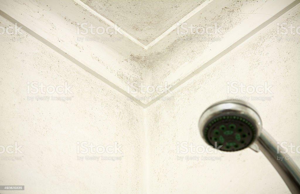 Moldy Tür und Wand in Dusche – Foto