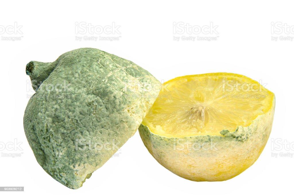 Moldy Lemon stock photo