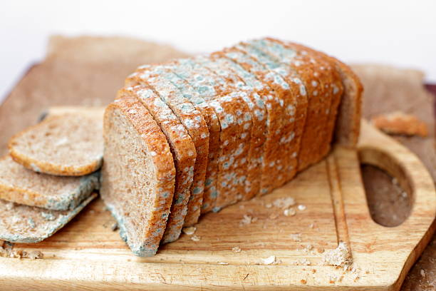 moldy loaf of bread - meeldauw stockfoto's en -beelden