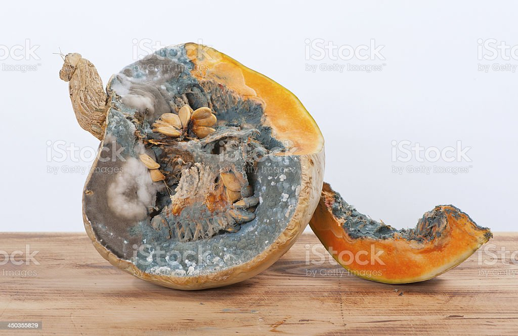 Moldy pumpkins and seeds royalty-free stock photo