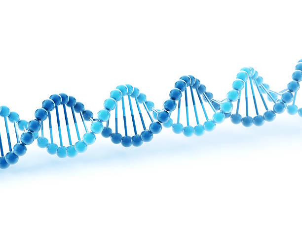 DNA Molecular Structure 3D Render of a blue simplified DNA molecular structure. Depth of field effect. Very high resolution available! Use it for Your own composings!Related images: abstract 3d stock pictures, royalty-free photos & images