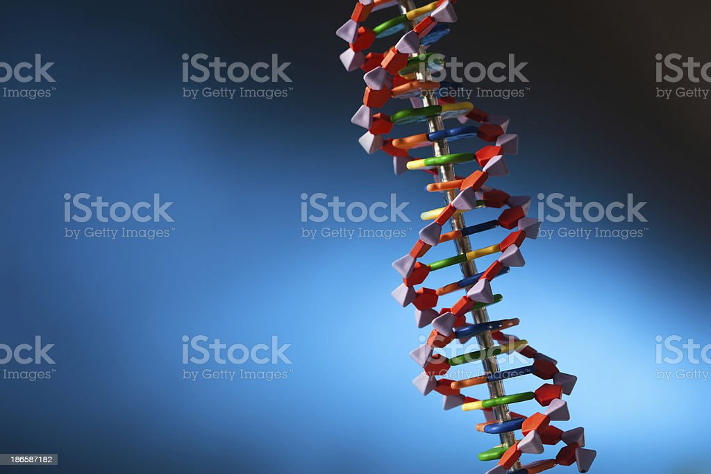DNA Molecule Double Helix Structure in Blue Background horizontal stock photo