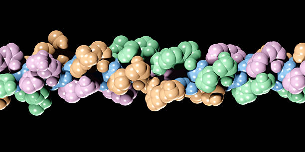 Molecule of Collagen stock photo