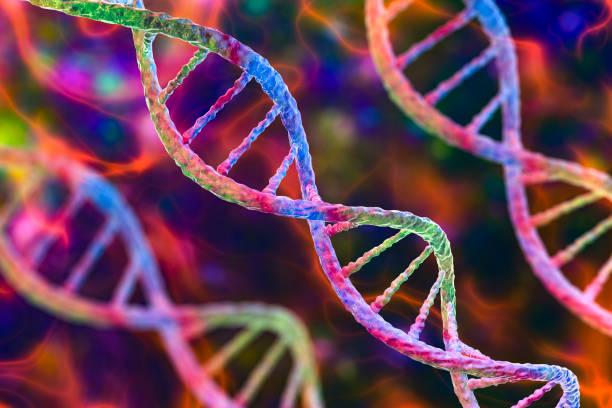 Molecule of DNA, double helix, 3D illustration stock photo