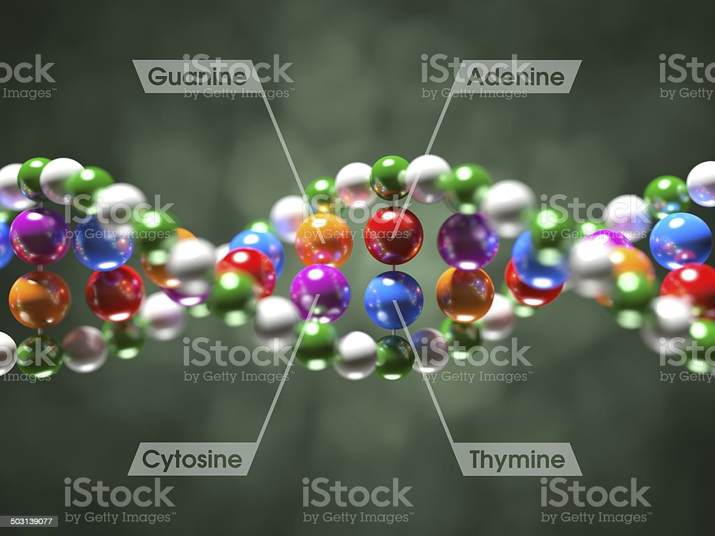 DNA Molecule XL+ stock photo