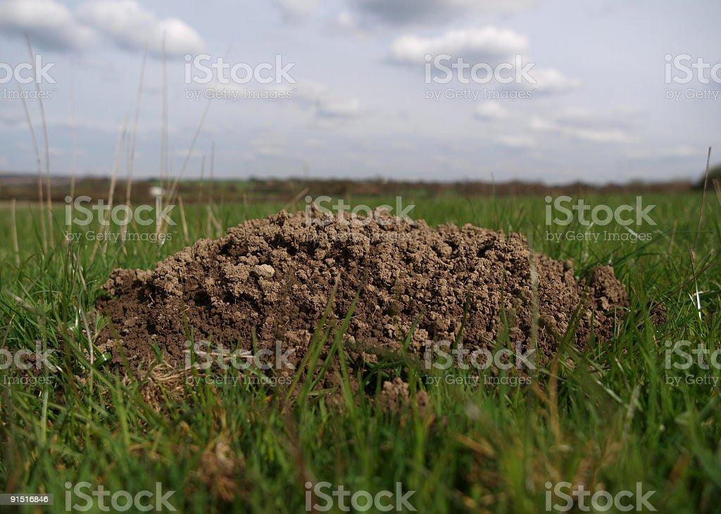 Molehill stock photo