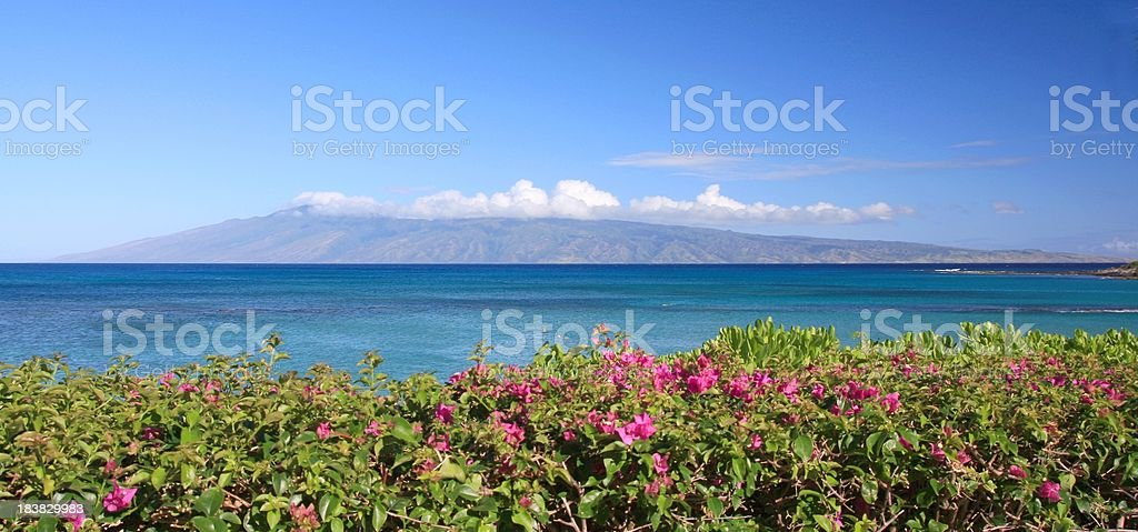 Molokai and flowers as seen from Maui Hawaii panorama stock photo