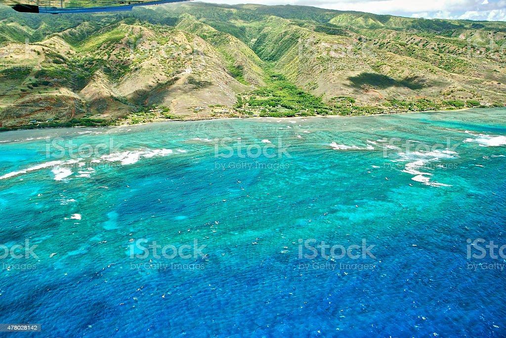 Molokai Reef stock photo
