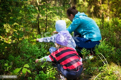 istock Mom and children take blueberries in a green summer forest on a bright sunny day. The family gathers berries in the forest. Little and daughter and son near mom tear blueberries. 1006469592