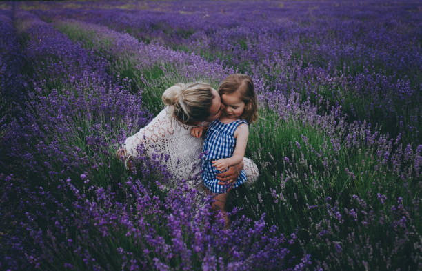 Mom and daughter in lavender. stock photo