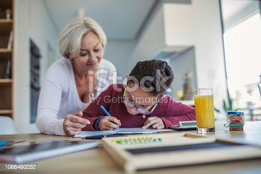 680535874 istock photo Mom and kid doing homework 1068460252