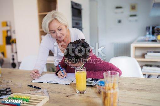 680535874 istock photo Mom and kid doing homework 1078063954