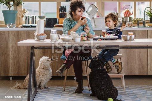 istock Mom And Son Tasting Birthday Muffins 1133918905