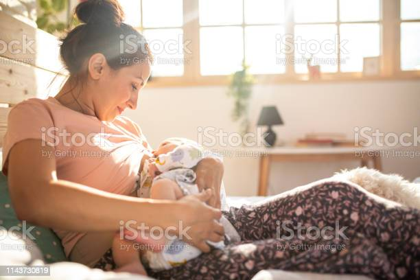 Mom breastfeeding baby boy on sunny morning picture id1143730819?b=1&k=6&m=1143730819&s=612x612&h=632sdyajutgn3mocqpcktp0foxsjukxueymhtcujkvo=