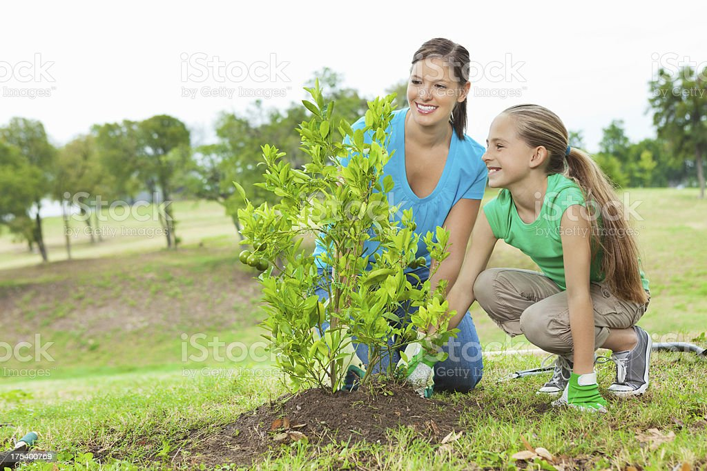 Mom & daughter planting orange tree in park: environmental conservation stock photo