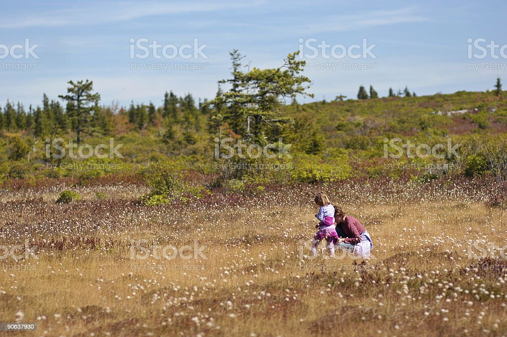 Mom with daughter piking cranberry royalty-free stock photo