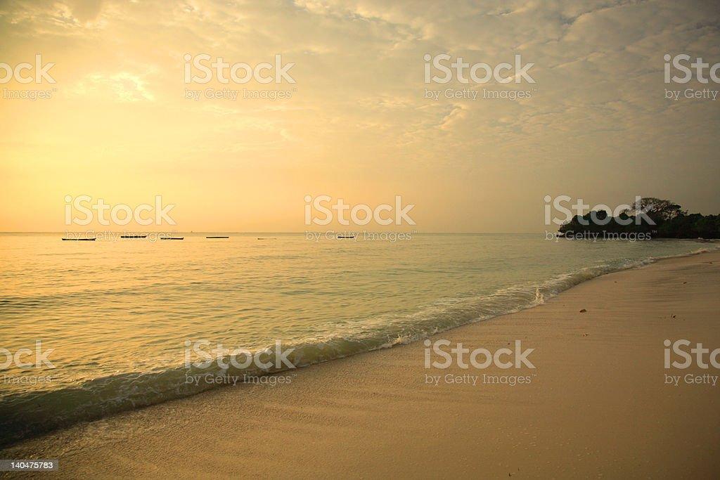 Mombasa shoreline at sunrise royalty-free stock photo