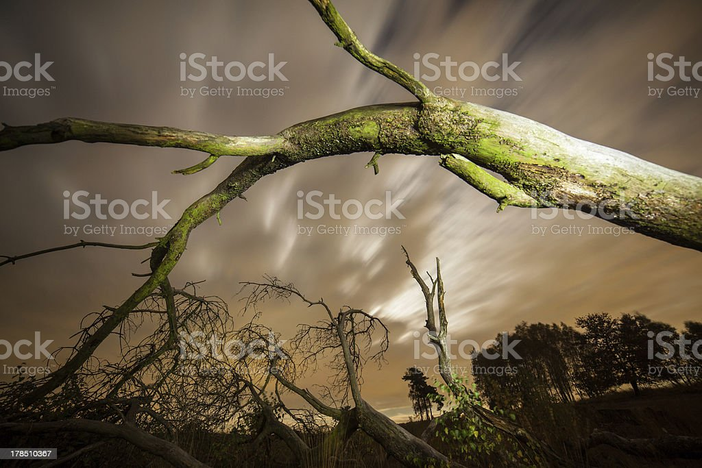 Moment in Time royalty-free stock photo