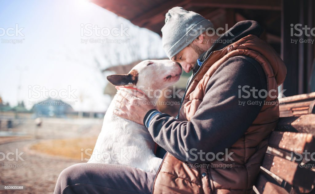 Moments of love between dog and his owner. Pets and animals concept stock photo
