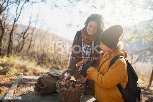 Boy and his mother with a basket full of freshly picked wild mushrooms in nature.