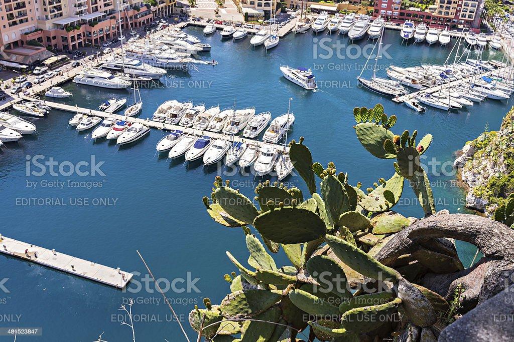 Monaco.  Paletta di cactus e la marina - foto stock