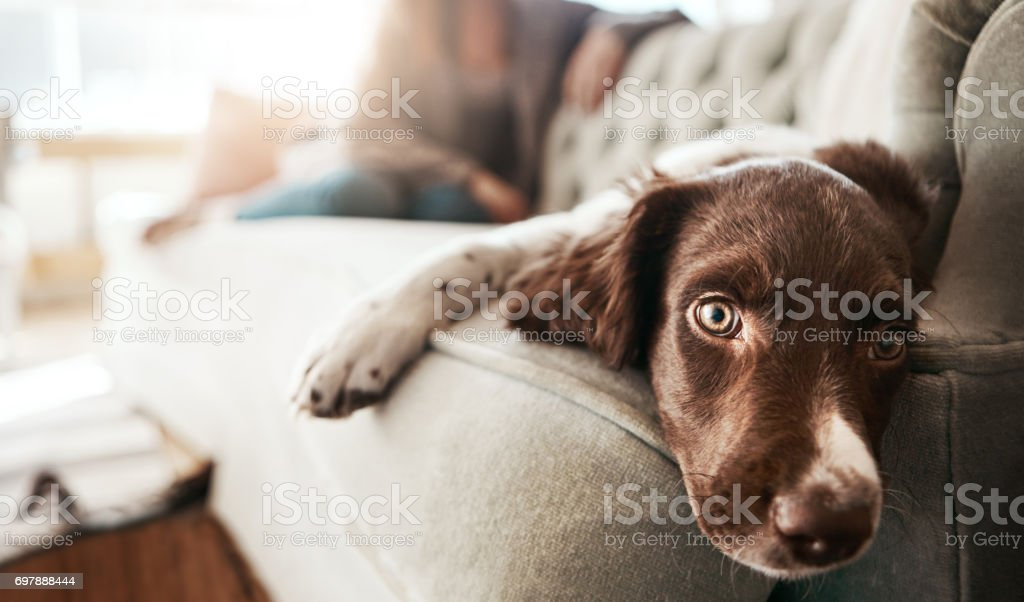 Monday mood! stock photo