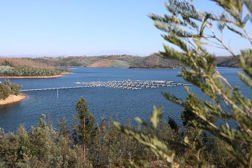 River marina of Aguiar da Beira in central Portugal. Landscape over the Mondego River.