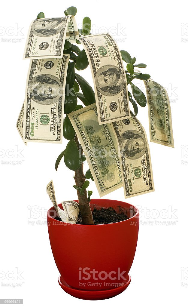 Monetary tree royalty-free stock photo