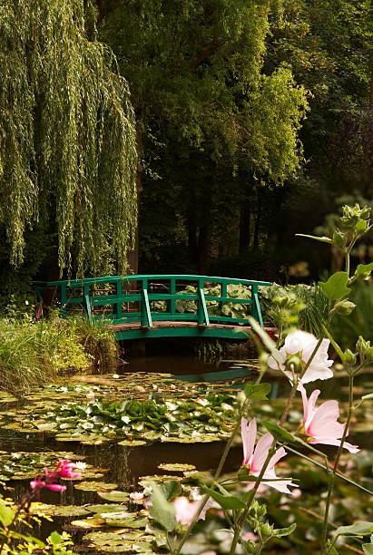 Monet's lilies stock photo