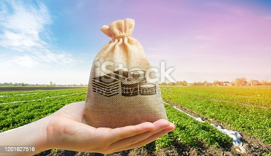 istock Money bag on the background of agricultural crops in the hand of the farmer. Agricultural startups. Profit from agribusiness. Lending and subsidizing farmers. Grants and support. Land value and rent. 1201627516