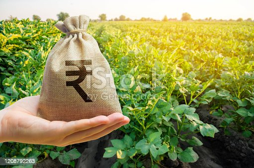 istock Money bag on the background of agricultural crops in the hand of the farmer. Agricultural startups. Profit from agribusiness. Lending and subsidizing farmers. Rupee, rupiah. Grants and support. 1208792263