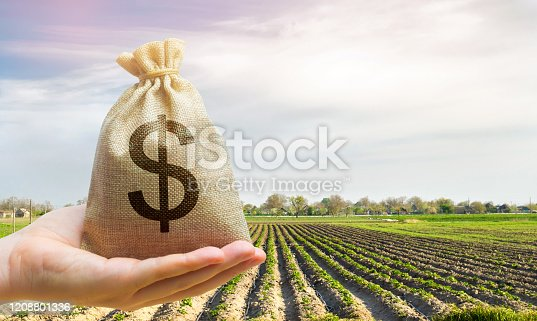 istock Money bag on the background of agricultural crops in the hand of the farmer. Agricultural startups. Profit from agribusiness. Lending and subsidizing farmers. Grants and support. Land value and rent. 1208801336