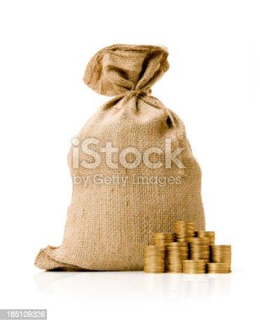 482747823istockphoto Money Bag 185109326