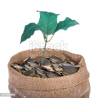 482747823istockphoto Money bag with coins and money tree 517340885