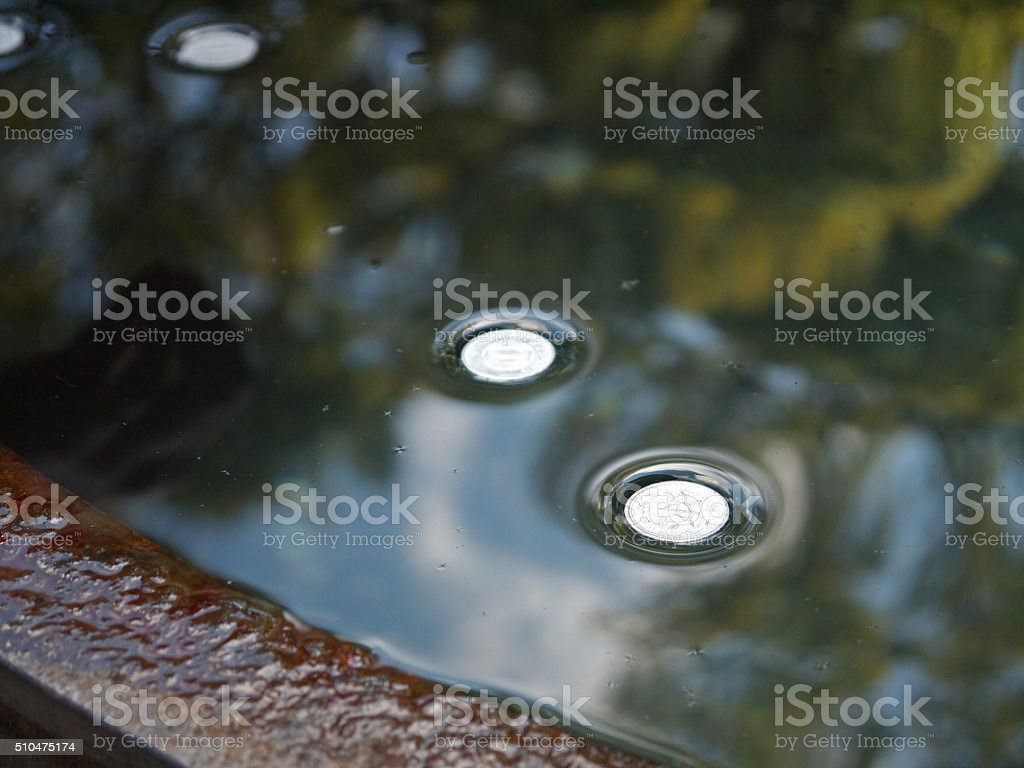 Money floating on water stock photo