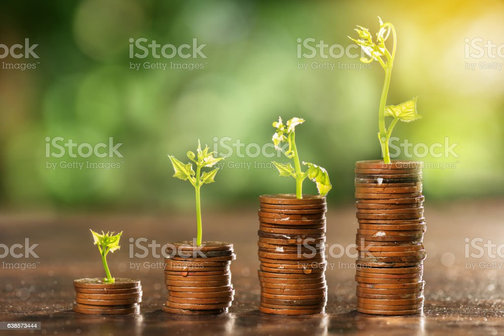 Money coin stack growing graph with tree top - foto de stock