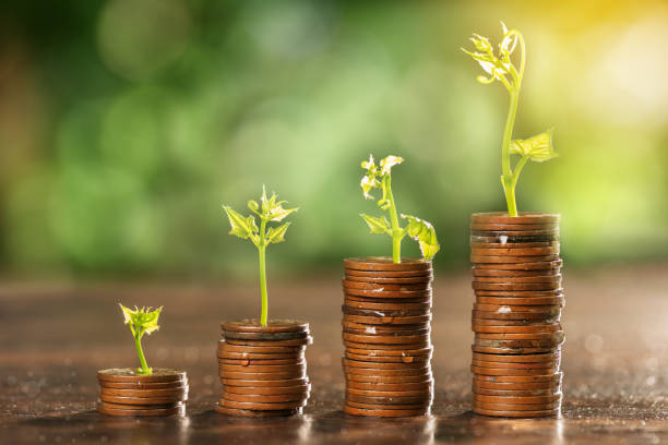 Money coin stack growing graph with tree top stock photo