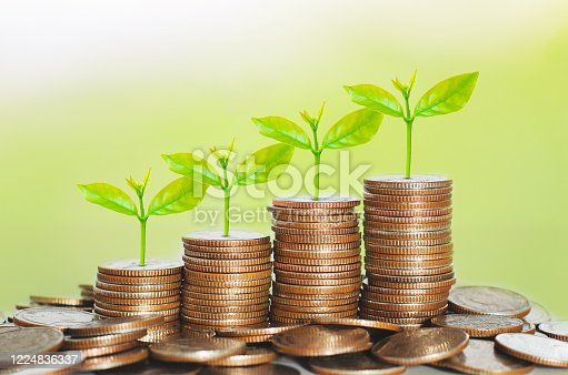 istock money for business investment finance and banking concept. green plant leaves growth up on row of saving coin stack on wood table with green blur nature background. 1224836337
