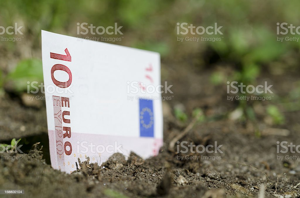 Money growing from the ground stock photo